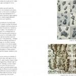 burrows_sca booklet-4 copy