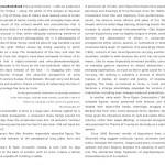 p3 copy 2